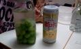 菊水ふなぐち梅酒